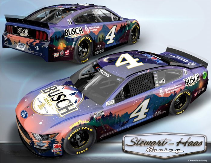 Harvick Daytona Car
